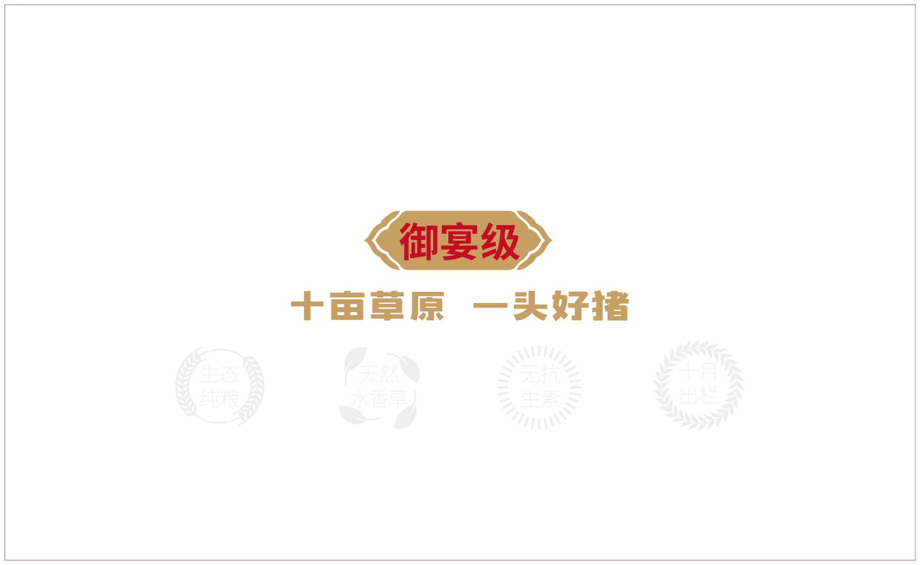 网站案例-草野香猪-03.jpg